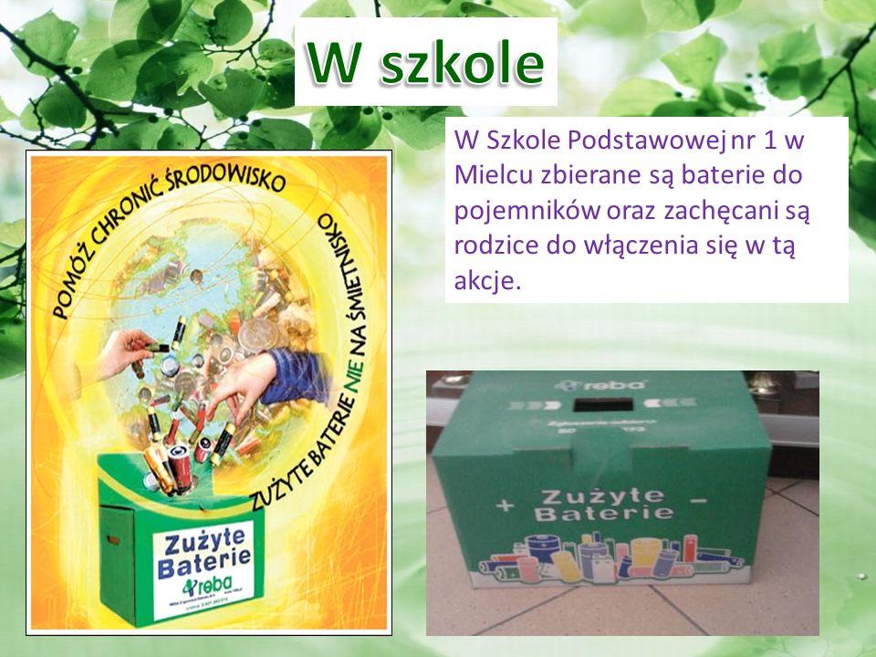 W Szkole Podstawowej nr 1 w Mielcu zbierane są baterie do pojemników oraz zachęcani są rodzice do włączenia się w tą akcje.