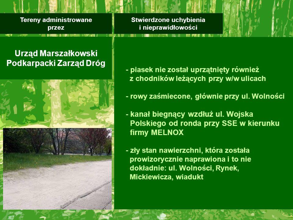 Generalnie należy stwierdzić, że poza w/w obszarami miasto Mielec jest miastem schludnym ciągle podnoszącym swoją estetykę.