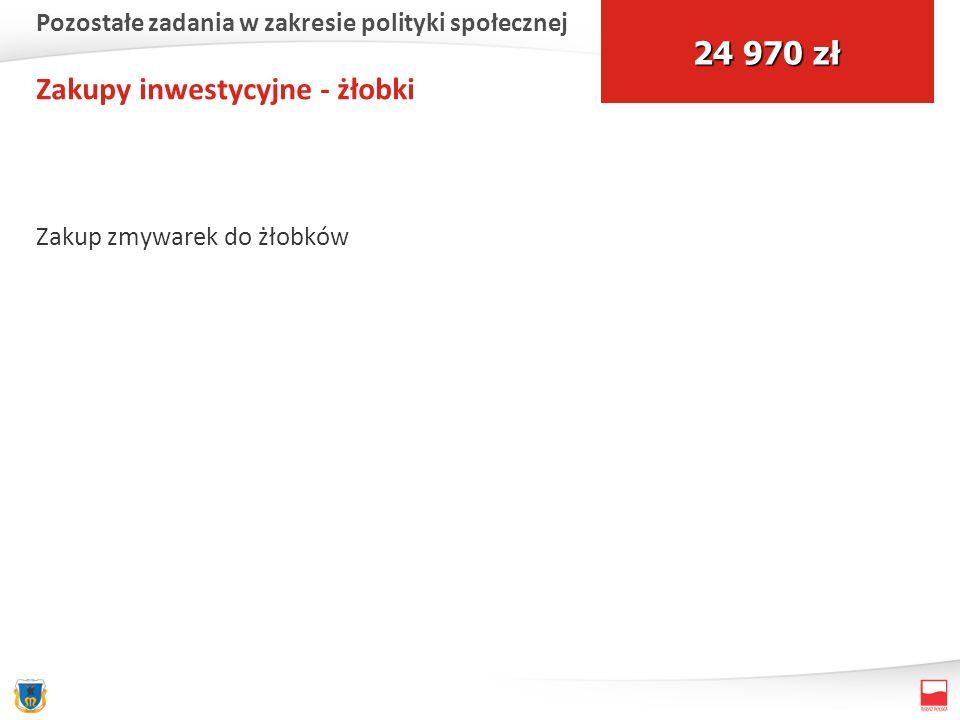 Zakupy inwestycyjne - żłobki Zakup zmywarek do żłobków 24 970 zł Pozostałe zadania w zakresie polityki społecznej