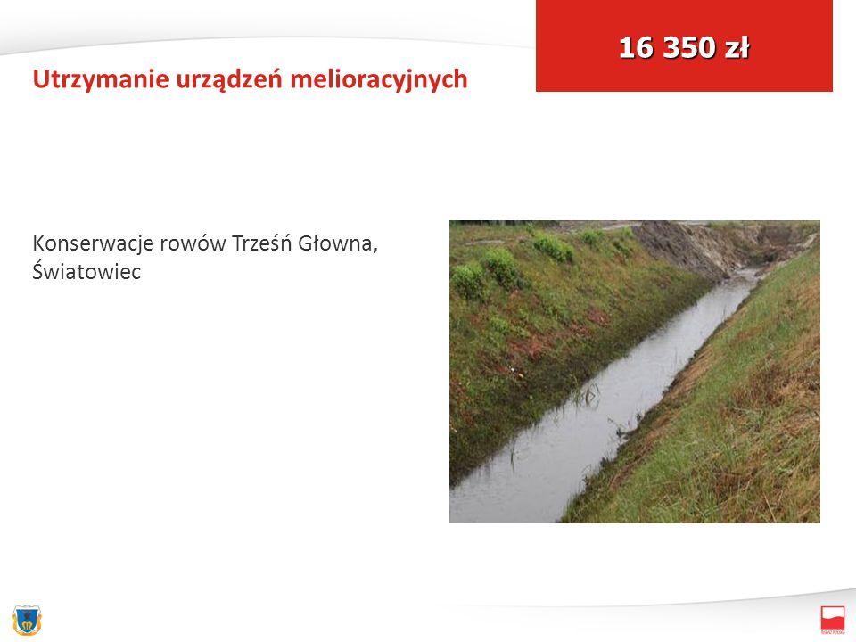 Utrzymanie urządzeń melioracyjnych Konserwacje rowów Trześń Głowna, Światowiec 16 350 zł