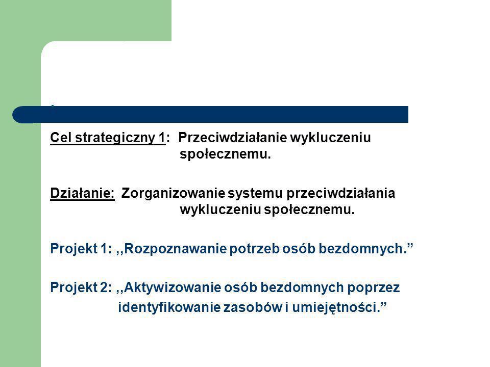 . Cel strategiczny 1: Przeciwdziałanie wykluczeniu społecznemu. Działanie: Zorganizowanie systemu przeciwdziałania wykluczeniu społecznemu. Projekt 1: