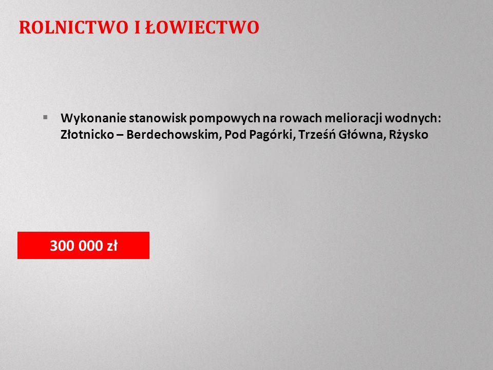 ROLNICTWO I ŁOWIECTWO Wykonanie stanowisk pompowych na rowach melioracji wodnych: Złotnicko – Berdechowskim, Pod Pagórki, Trześń Główna, Rżysko 300 000 zł