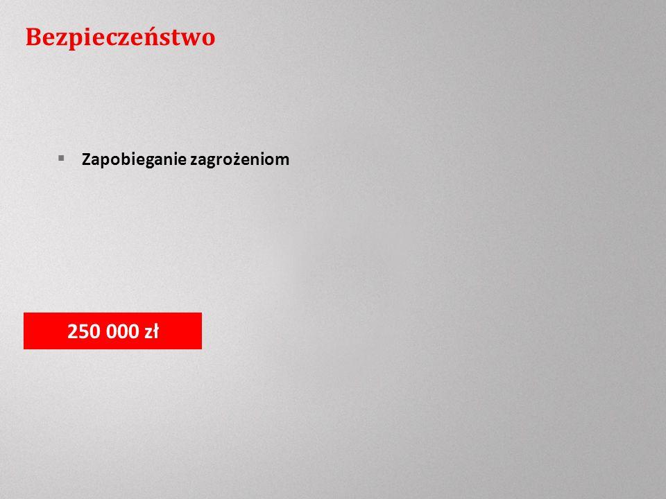 Bezpieczeństwo Zapobieganie zagrożeniom 250 000 zł