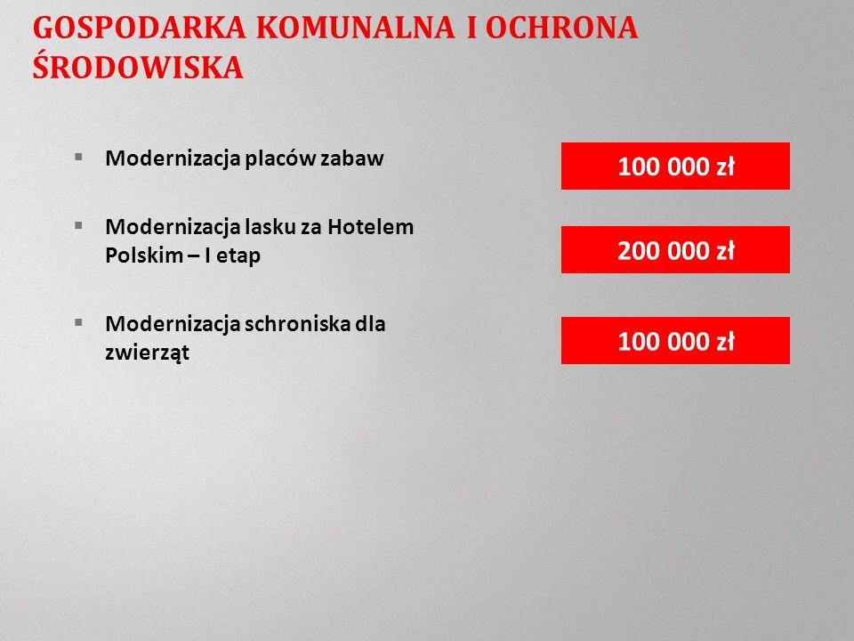 Modernizacja placów zabaw Modernizacja lasku za Hotelem Polskim – I etap Modernizacja schroniska dla zwierząt 100 000 zł 200 000 zł 100 000 zł GOSPODARKA KOMUNALNA I OCHRONA ŚRODOWISKA