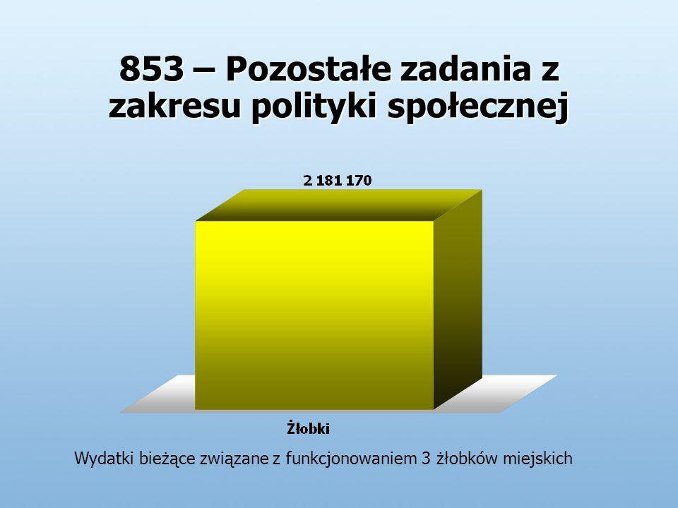 853 – Pozostałe zadania z zakresu polityki społecznej Wydatki bieżące związane z funkcjonowaniem 3 żłobków miejskich