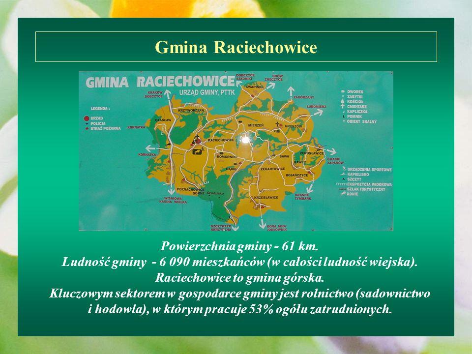 Powierzchnia gminy - 61 km. Ludność gminy - 6 090 mieszkańców (w całości ludność wiejska). Raciechowice to gmina górska. Kluczowym sektorem w gospodar