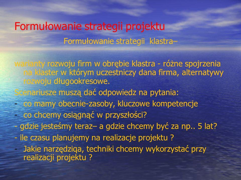 Formułowanie strategii projektu Formułowanie strategii klastra– warianty rozwoju firm w obrębie klastra - różne spojrzenia na klaster w którym uczestn