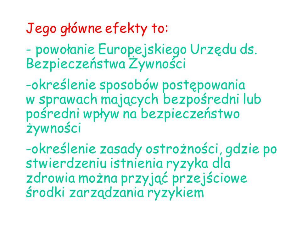 Jego główne efekty to: - powołanie Europejskiego Urzędu ds.