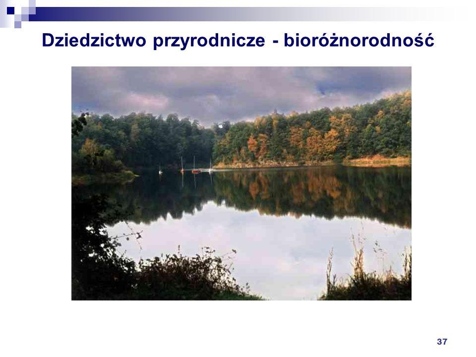 37 Dziedzictwo przyrodnicze - bioróżnorodność