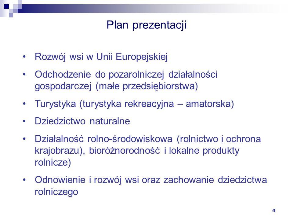 4 Plan prezentacji Rozwój wsi w Unii Europejskiej Odchodzenie do pozarolniczej działalności gospodarczej (małe przedsiębiorstwa) Turystyka (turystyka