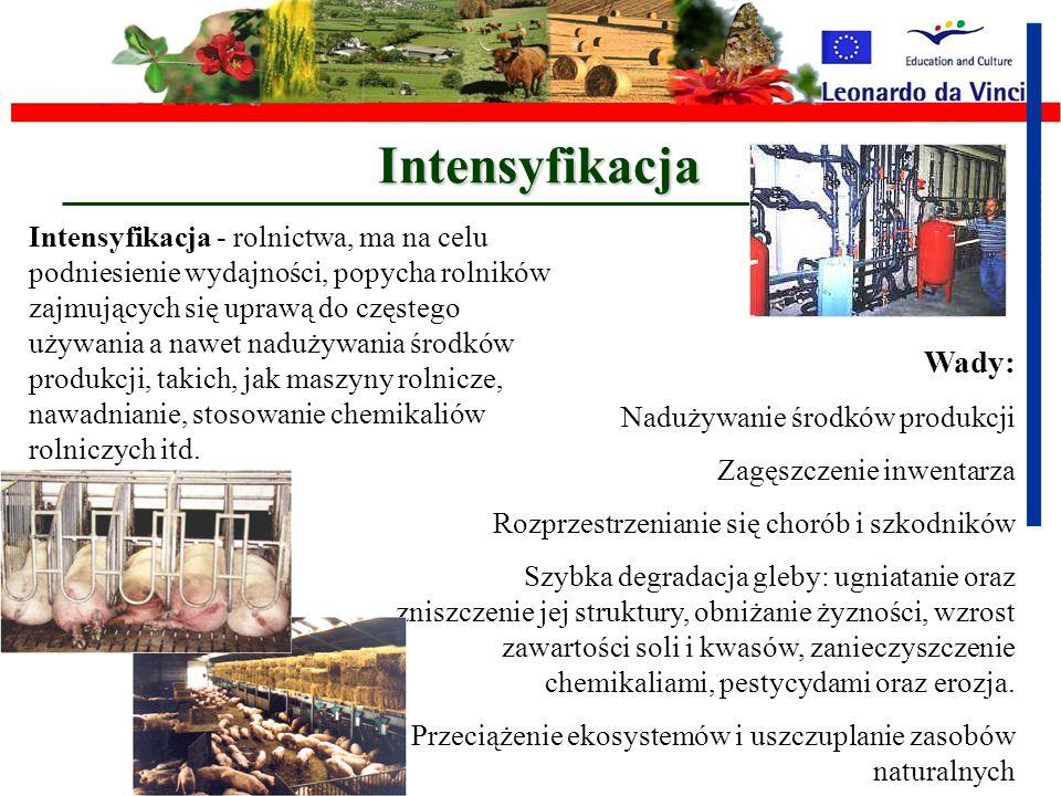 Gospodarstwawielkoobszarowe Intensyfikacja Monokultury Irygacja Pestycydy Nawozy chemiczne Ciężki sprzęt rolniczy Odpady z produkcji rolniczej Organiz