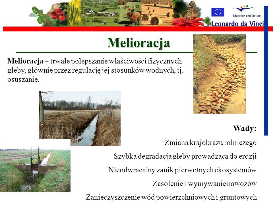 Rolniczy krajobraz z irygacją mechaniczną