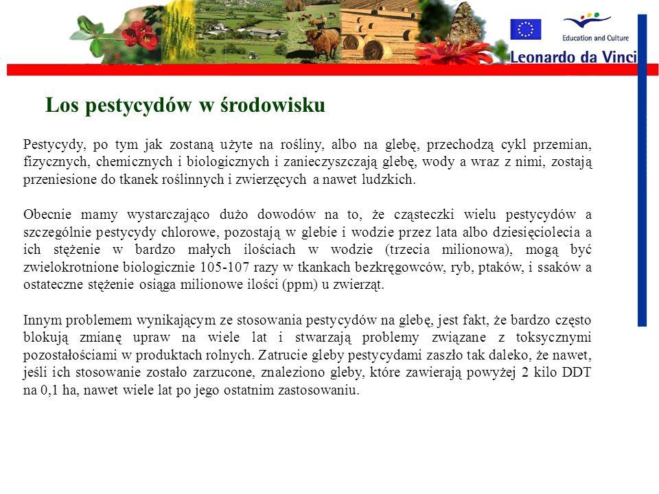 I. Zoocydy - środki do zwalczania szkodników zwierzęcych: I.Insektycydy - środki owadobójcze, II.Rodentycydy - środki gryzoniobójcze, III.Moluskocydy