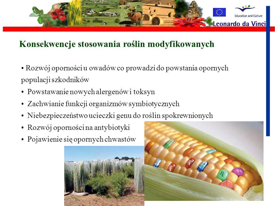 Rośliny modyfikowane genetycznie jako pasożyty i najeźdźcy Aby jaśniej opisać i wyjaśnić pojęcie pasożyt należy wspomnieć, że termin ten jest używany