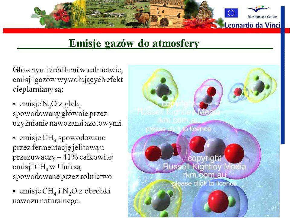 Skutki intensyfikacji Emisje szkodliwych gazów Powstawanie i rozprzestrzenianie się pyłów i kurzu Toksyczne wycieki pestycydów Zanieczyszczenia wody i