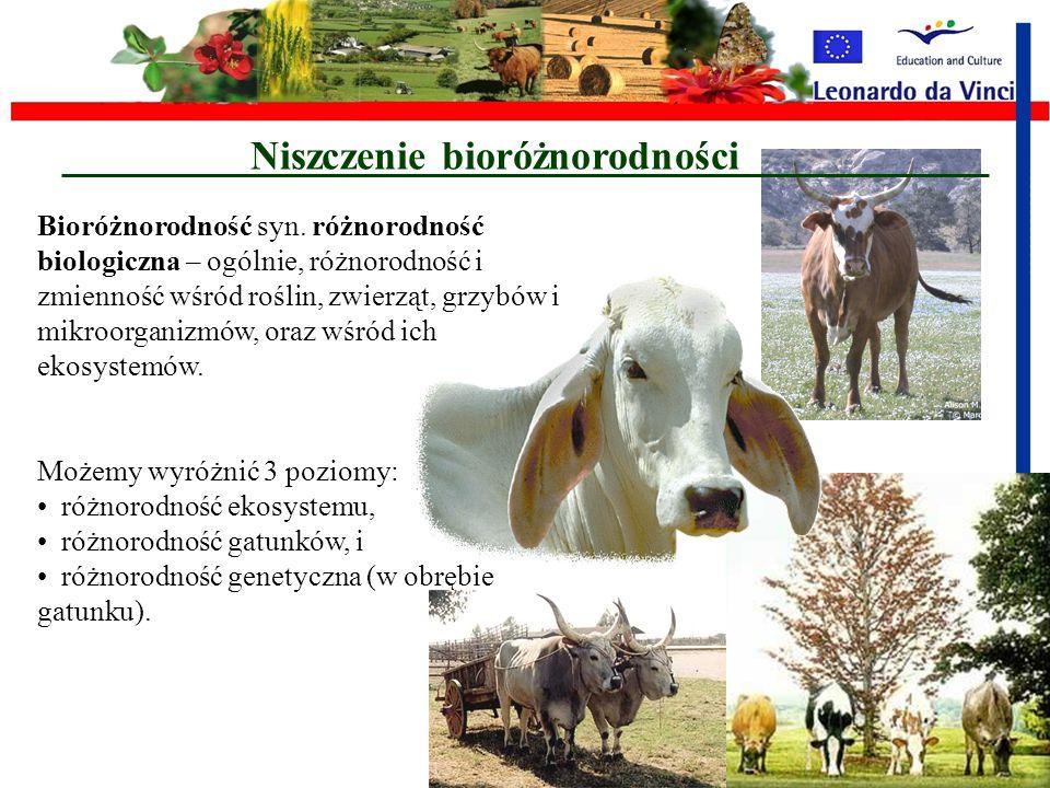Emisje gazów do atmosfery Głównymi źródłami w rolnictwie, emisji gazów wywołujących efekt cieplarniany są: emisje N 2 O z gleb, spowodowany głównie pr