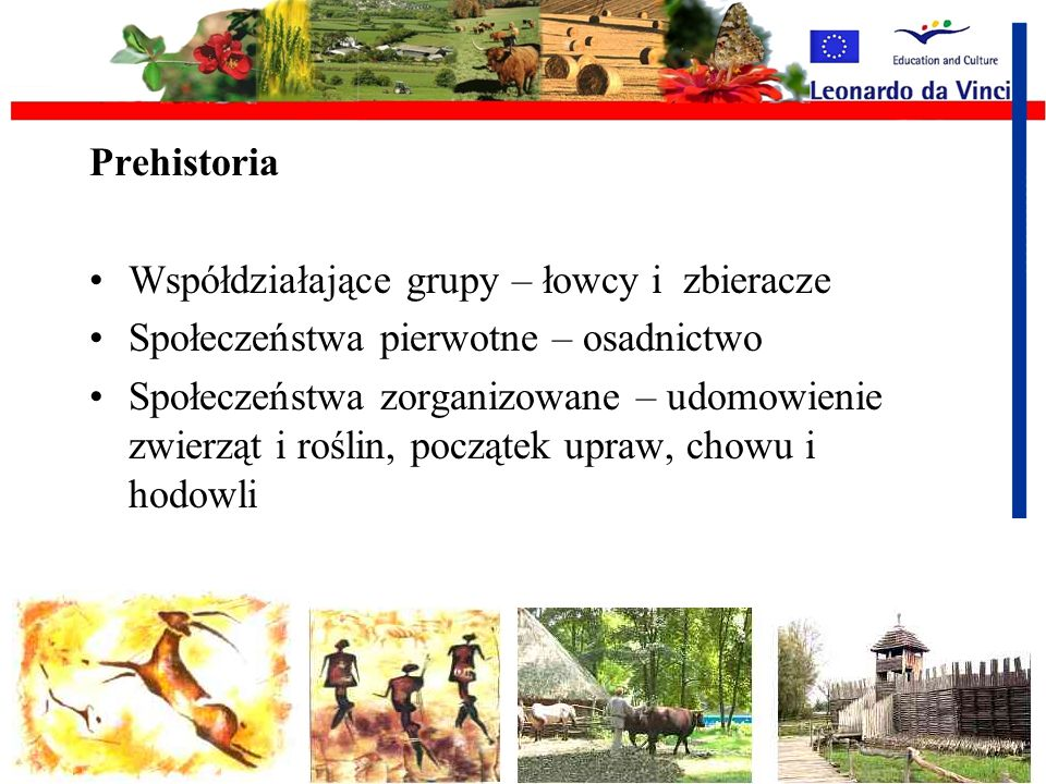 Bardzo dziękuję za uwagę mgr Renata Myczko Zakład Informacji Naukowo -Technicznej i Promocji IBMER o/Poznań tel.