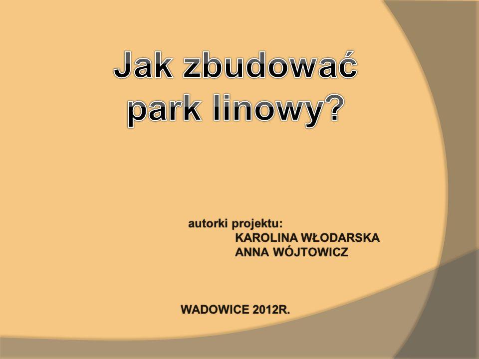 autorki projektu:autorki projektu: KAROLINA WŁODARSKAKAROLINA WŁODARSKA ANNA WÓJTOWICZ ANNA WÓJTOWICZ WADOWICE 2012R.WADOWICE 2012R.
