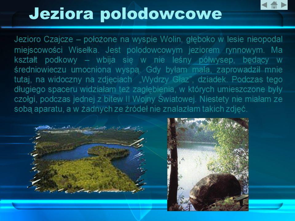 Jeziora polodowcowe Jezioro Czajcze – położone na wyspie Wolin, głęboko w lesie nieopodal miejscowości Wisełka. Jest polodowcowym jeziorem rynnowym. M