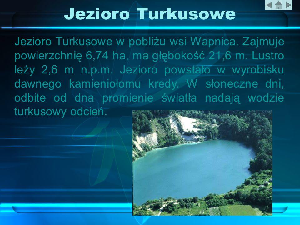 Jezioro Turkusowe Jezioro Turkusowe w pobliżu wsi Wapnica. Zajmuje powierzchnię 6,74 ha, ma głębokość 21,6 m. Lustro leży 2,6 m n.p.m. Jezioro powstał