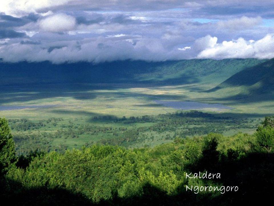Kaldera Ngorongoro