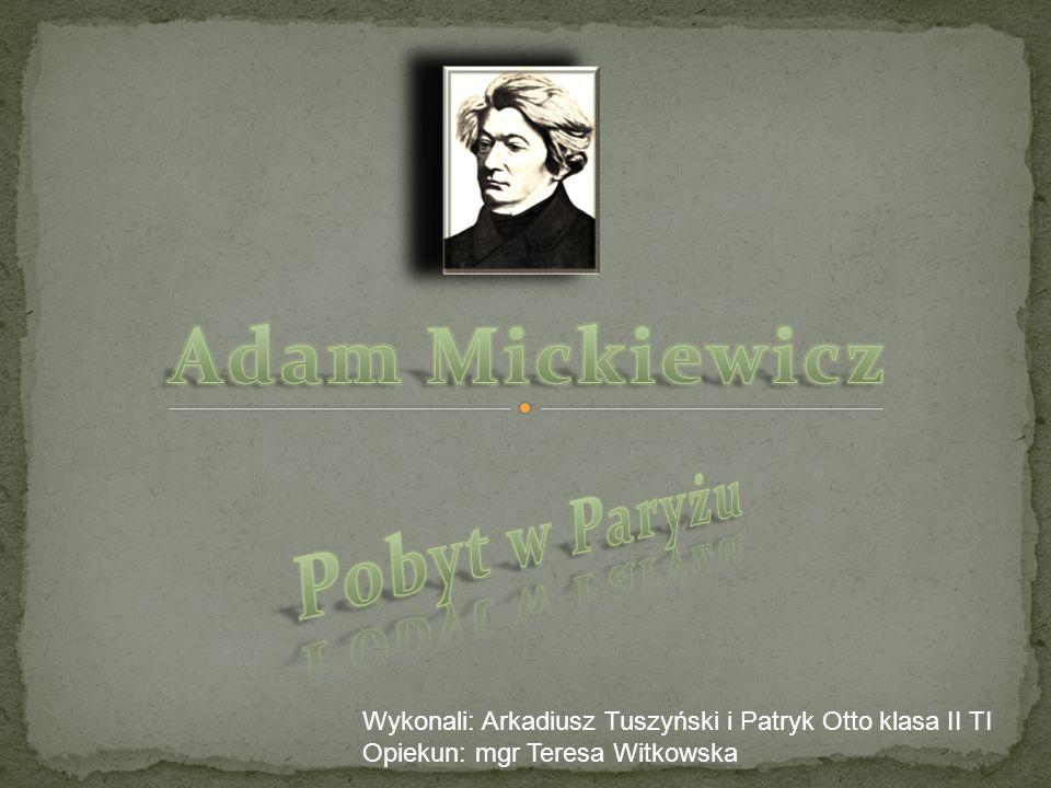 Wykonali: Arkadiusz Tuszyński i Patryk Otto klasa II TI Opiekun: mgr Teresa Witkowska