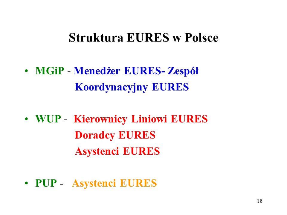 18 Struktura EURES w Polsce MGiP - Menedżer EURES- Zespół Koordynacyjny EURES WUP - Kierownicy Liniowi EURES Doradcy EURES Asystenci EURES PUP - Asystenci EURES