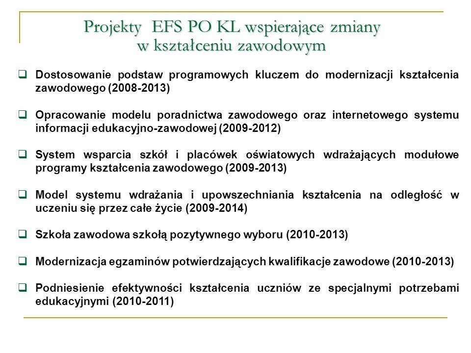 Dostosowanie podstaw programowych kluczem do modernizacji kształcenia zawodowego (2008-2013) Opracowanie modelu poradnictwa zawodowego oraz internetow