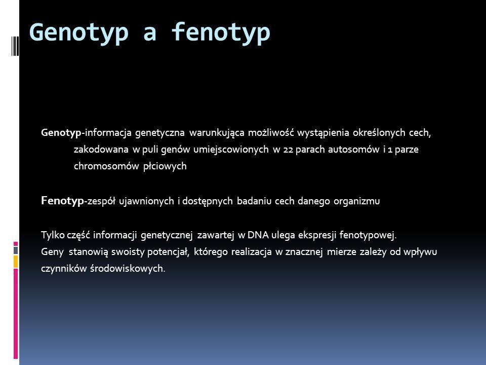 Genotyp a fenotyp Genotyp-informacja genetyczna warunkująca możliwość wystąpienia określonych cech, zakodowana w puli genów umiejscowionych w 22 parac