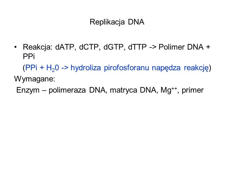 Replikacja DNA Reakcja: dATP, dCTP, dGTP, dTTP -> Polimer DNA + PPi (PPi + H 2 0 -> hydroliza pirofosforanu napędza reakcję) Wymagane: Enzym – polimer