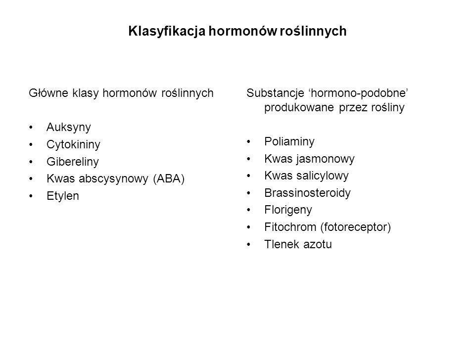 Klasyfikacja hormonów roślinnych Główne klasy hormonów roślinnych Auksyny Cytokininy Gibereliny Kwas abscysynowy (ABA) Etylen Substancje hormono-podob