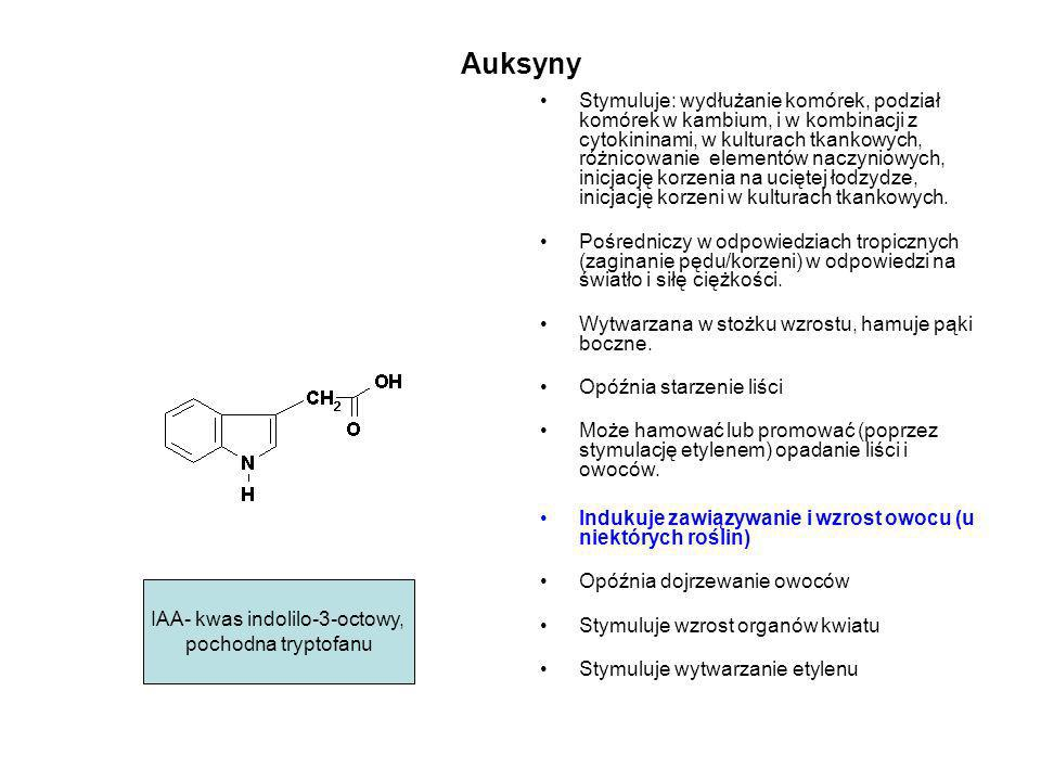 Auksyny Stymuluje: wydłużanie komórek, podział komórek w kambium, i w kombinacji z cytokininami, w kulturach tkankowych, różnicowanie elementów naczyn