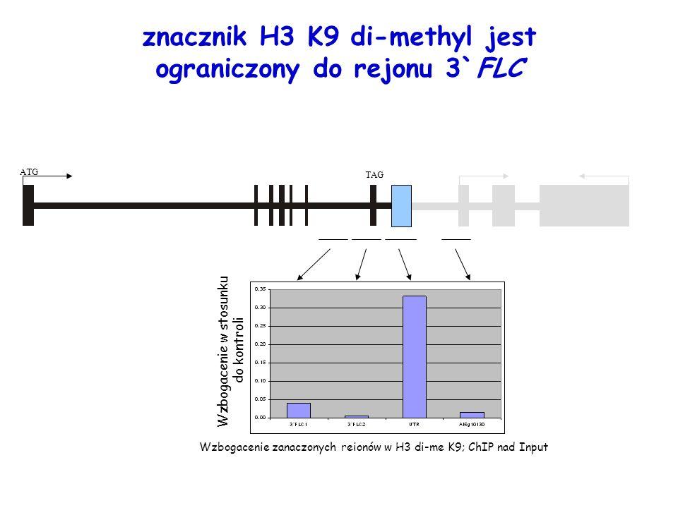 Wzbogacenie zanaczonych reionów w H3 di-me K9; ChIP nad Input Wzbogacenie w stosunku do kontroli znacznik H3 K9 di-methyl jest ograniczony do rejonu 3