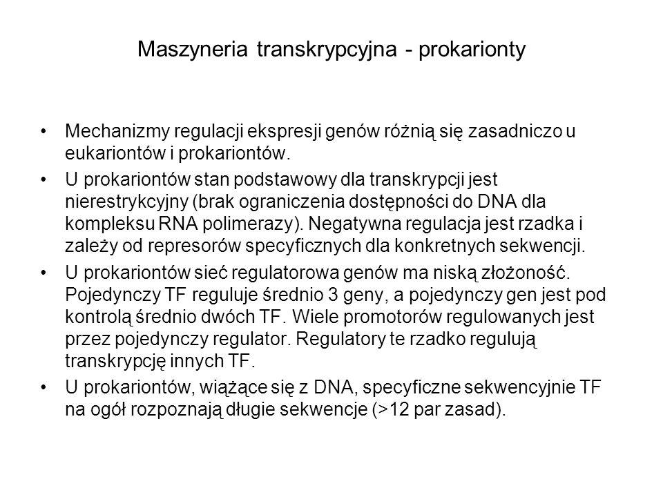 Maszyneria transkrypcyjna - prokarionty Mechanizmy regulacji ekspresji genów różnią się zasadniczo u eukariontów i prokariontów. U prokariontów stan p