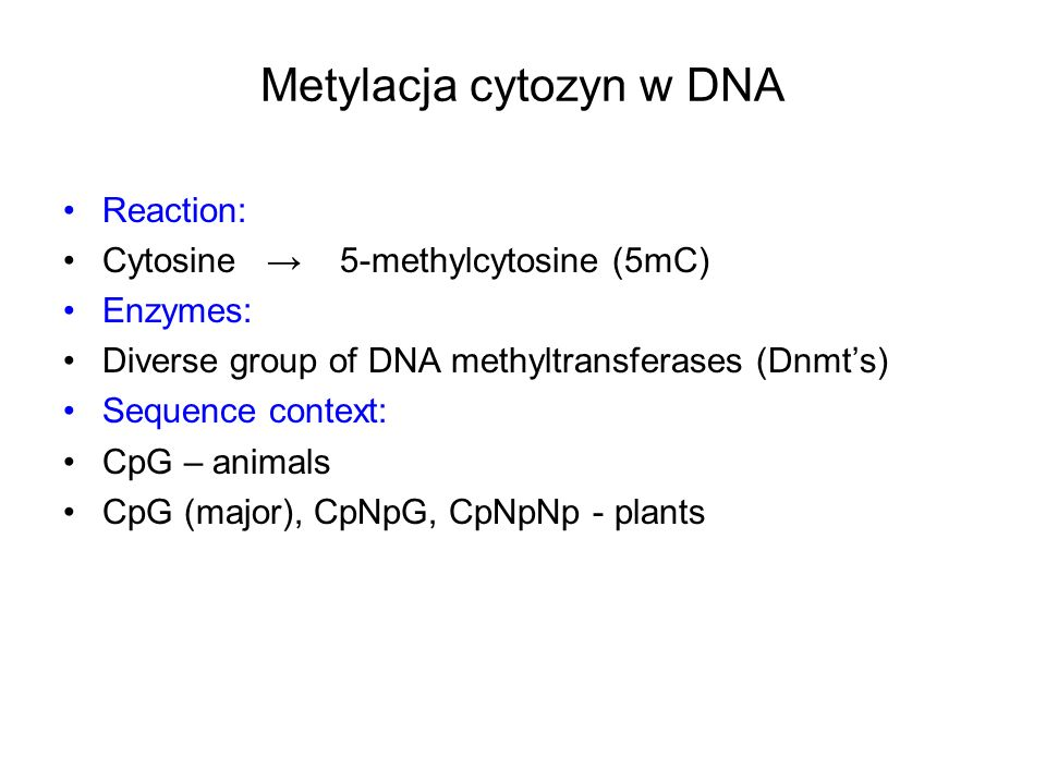 Metylacja cytozyn w DNA Reaction: Cytosine 5-methylcytosine (5mC) Enzymes: Diverse group of DNA methyltransferases (Dnmts) Sequence context: CpG – ani