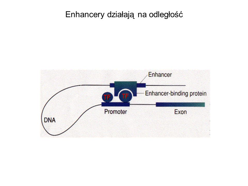 Enhancery działają na odległość