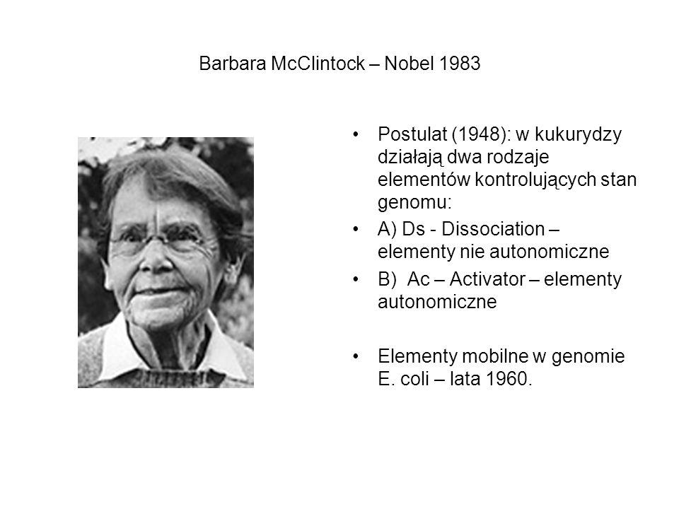 Transpozycja u bakterii – elementy IS (Insertion Sequences) Najprostsze elementy mobilne: blokują ekspresję genu docelowego i wszystkich genów poniżej znajdujących się w tym samym operonie.