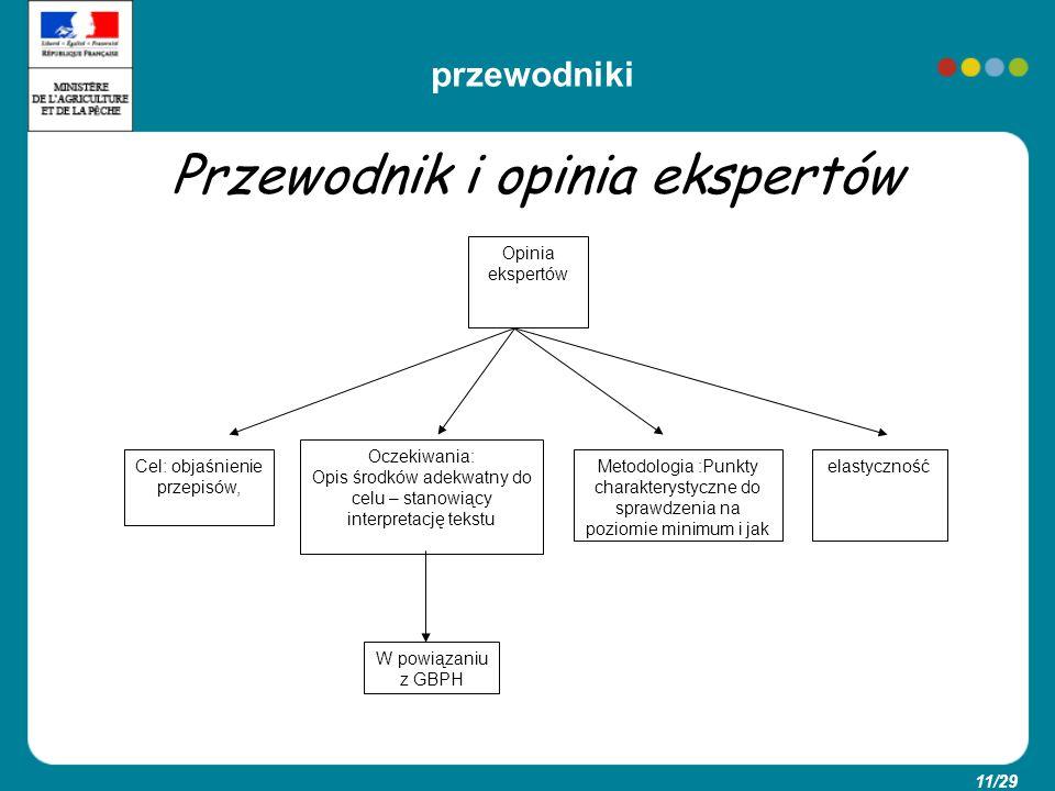 11/29 Przewodnik i opinia ekspertów Opinia ekspertów Cel: objaśnienie przepisów, Oczekiwania: Opis środków adekwatny do celu – stanowiący interpretacj
