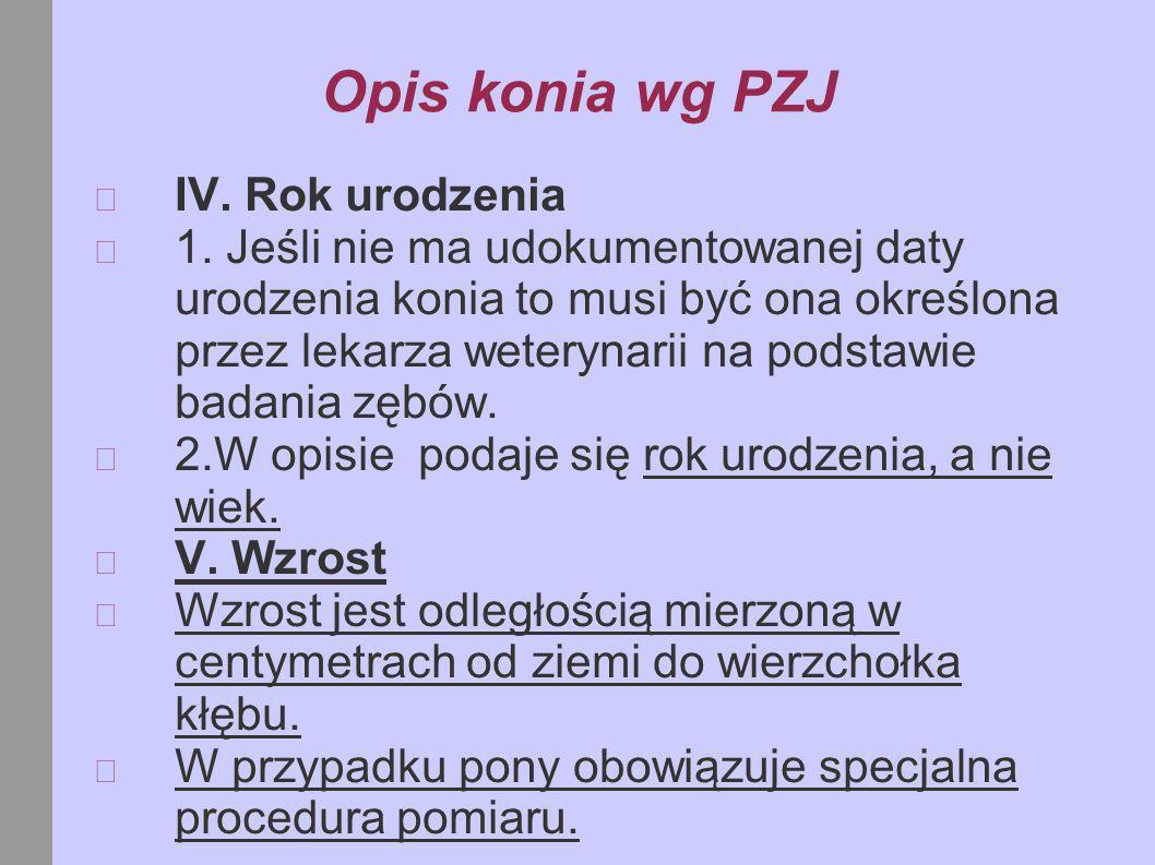 B.Kończyny Opis odmian na kończynach powinien zachować logiczny ciąg.