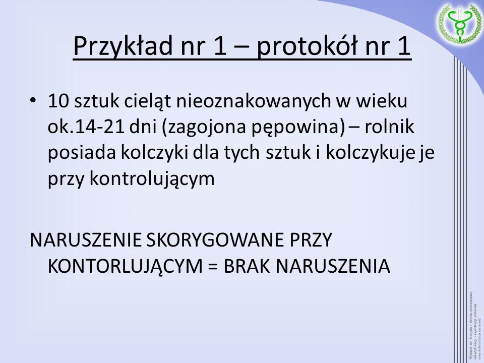 Przykład nr 1 – protokół nr 1 10 sztuk cieląt nieoznakowanych w wieku ok.14-21 dni (zagojona pępowina) – rolnik posiada kolczyki dla tych sztuk i kolc