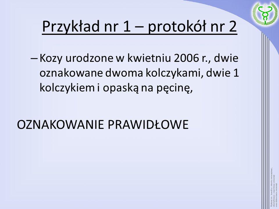 Przykład nr 1 – protokół nr 2 – Kozy urodzone w kwietniu 2006 r., dwie oznakowane dwoma kolczykami, dwie 1 kolczykiem i opaską na pęcinę, OZNAKOWANIE