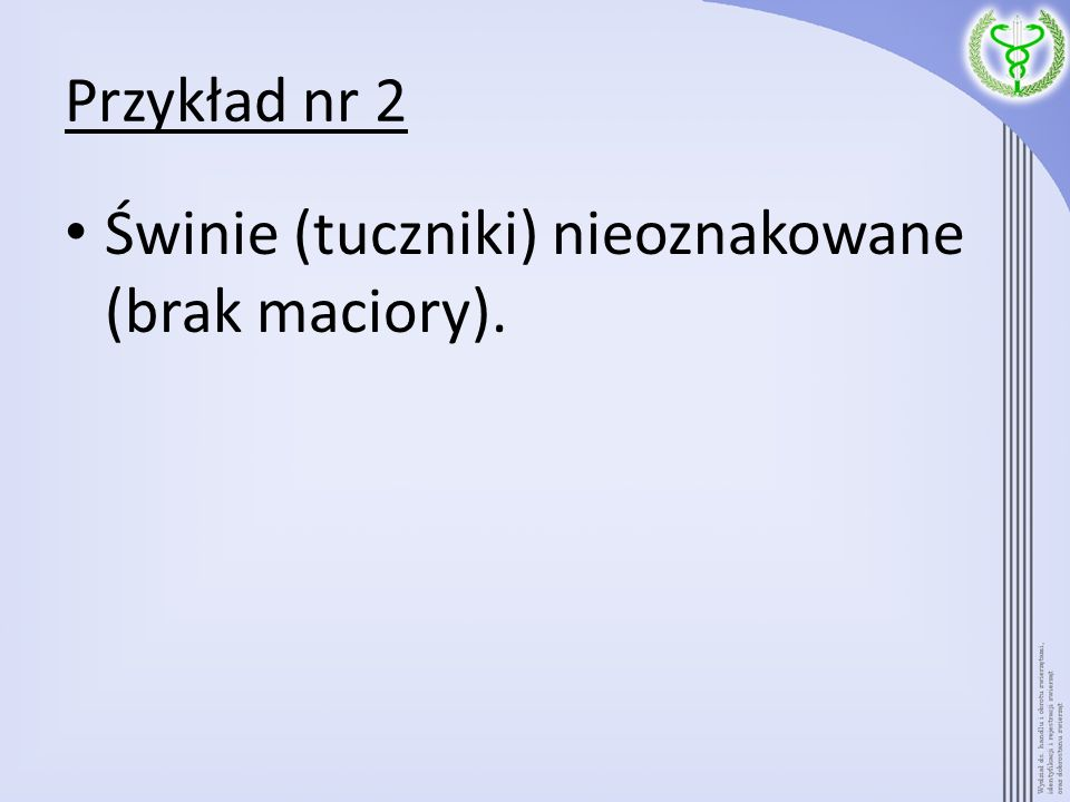 Przykład nr 2 Świnie (tuczniki) nieoznakowane (brak maciory).