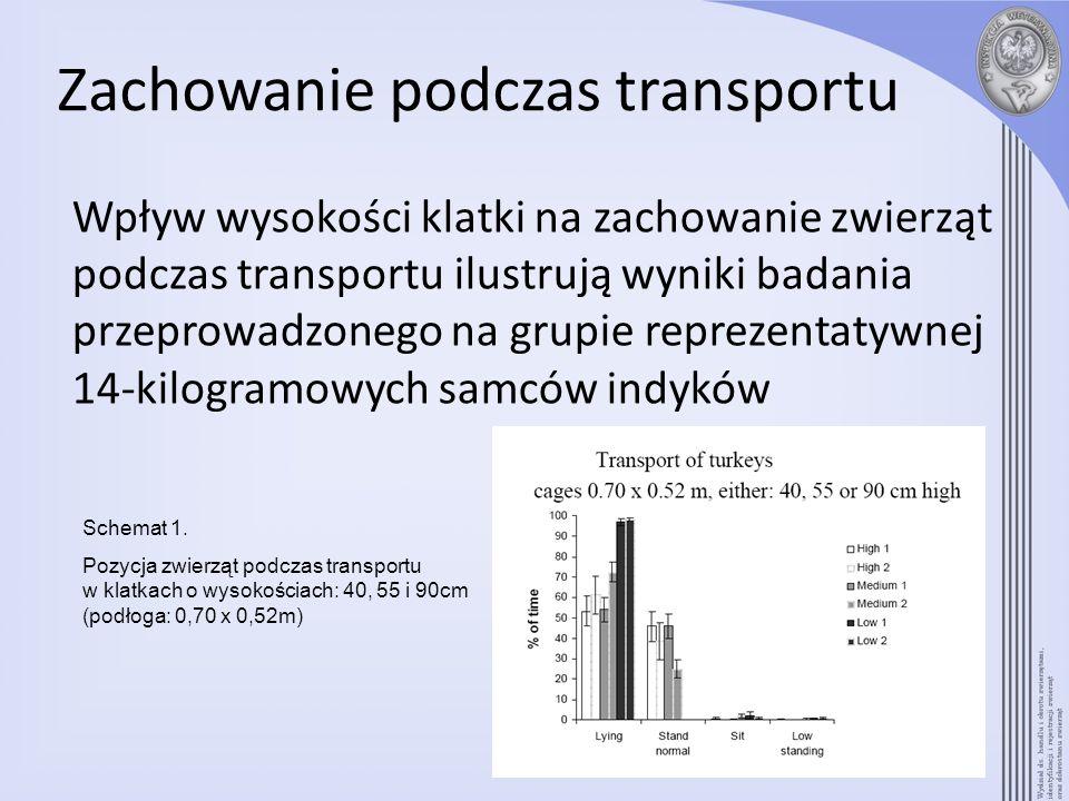 Zachowanie podczas transportu Wpływ wysokości klatki na zachowanie zwierząt podczas transportu ilustrują wyniki badania przeprowadzonego na grupie rep