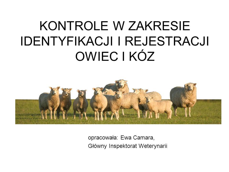 KONTROLE W ZAKRESIE IDENTYFIKACJI I REJESTRACJI OWIEC I KÓZ opracowała: Ewa Camara, Główny Inspektorat Weterynarii