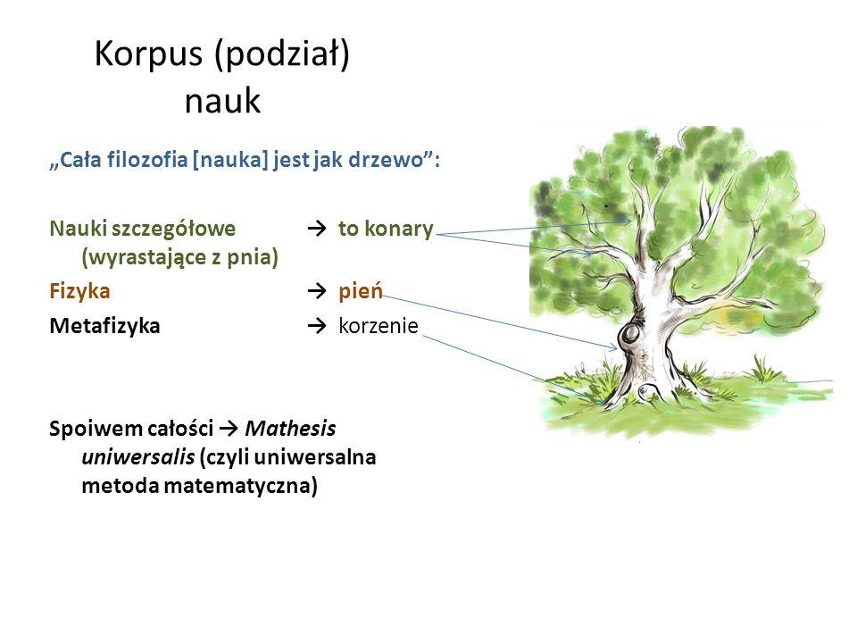 Korpus (podział) nauk Cała filozofia [nauka] jest jak drzewo: Nauki szczegółowe to konary (wyrastające z pnia) Fizyka pień Metafizyka korzenie Spoiwem
