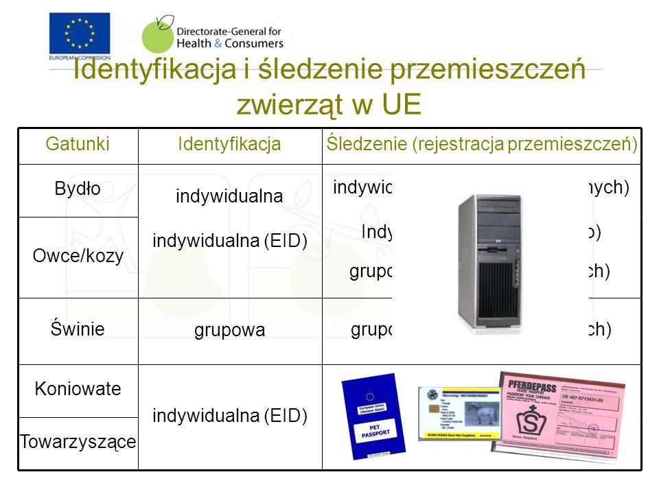 Identyfikacja i śledzenie przemieszczeń zwierząt w UE GatunkiIdentyfikacjaŚledzenie (rejestracja przemieszczeń) Bydło indywidualna indywidualna (EID)