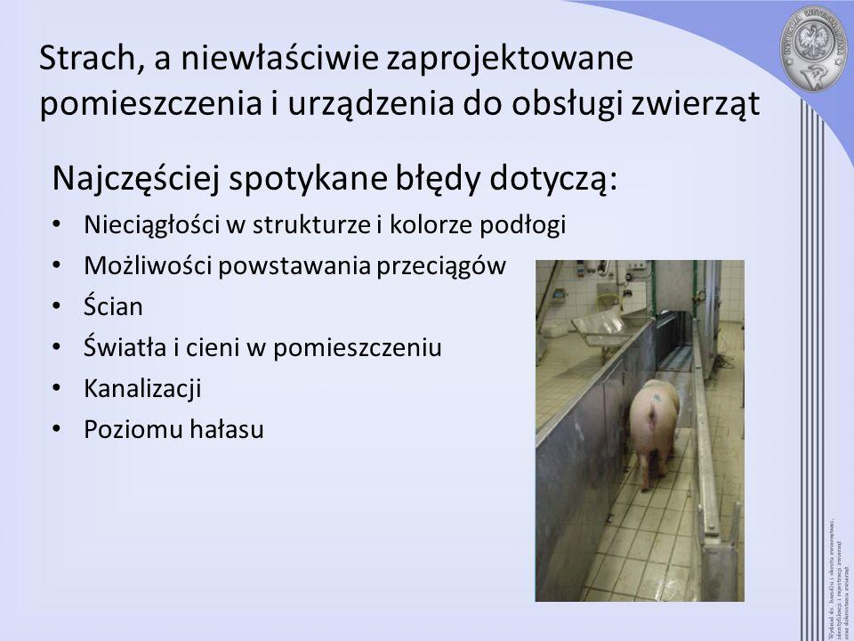 Strach, a niewłaściwie zaprojektowane pomieszczenia i urządzenia do obsługi zwierząt Najczęściej spotykane błędy dotyczą: Nieciągłości w strukturze i