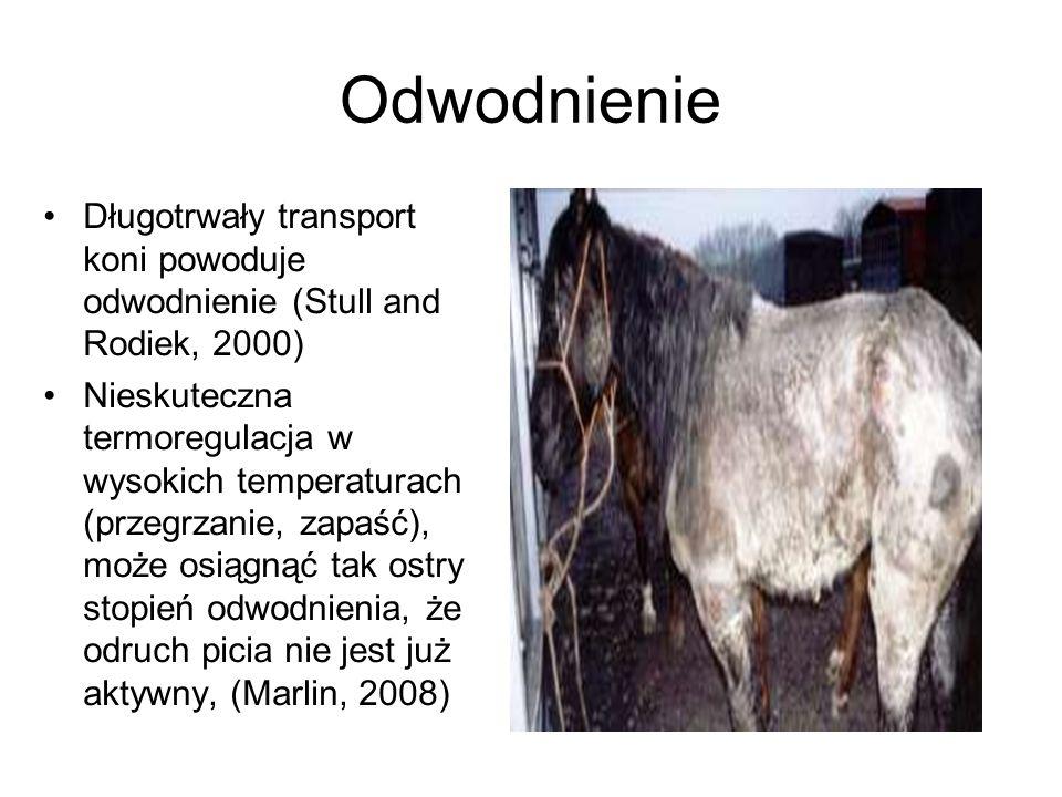Odwodnienie Długotrwały transport koni powoduje odwodnienie (Stull and Rodiek, 2000) Nieskuteczna termoregulacja w wysokich temperaturach (przegrzanie