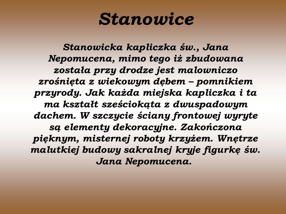 Stanowice Stanowicka kapliczka św., Jana Nepomucena, mimo tego iż zbudowana została przy drodze jest malowniczo zrośnięta z wiekowym dębem – pomnikiem