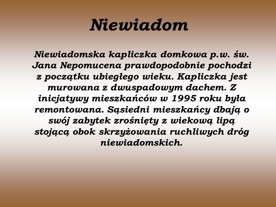 Niewiadom Niewiadomska kapliczka domkowa p.w. św. Jana Nepomucena prawdopodobnie pochodzi z początku ubiegłego wieku. Kapliczka jest murowana z dwuspa